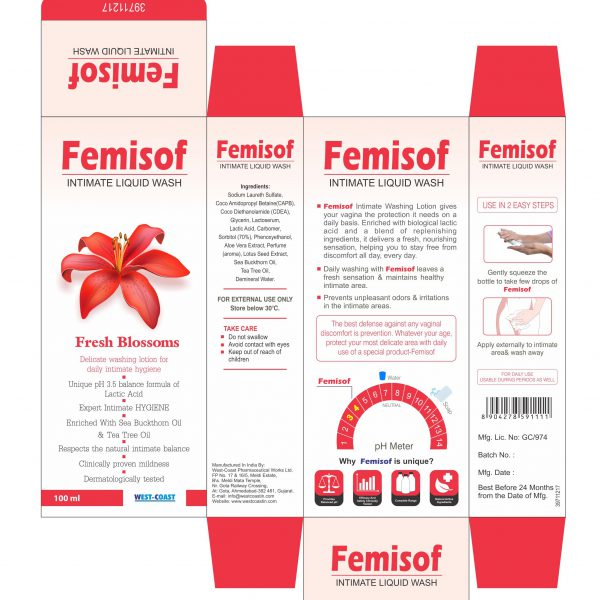 FEMISOF INTIMATE LIQUID WASH BOX