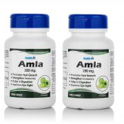 HealthVit-AMDA-Amla-Powder-250-mg-For-Immunity-60-Capsules-Pack-Of-2-1-Copy