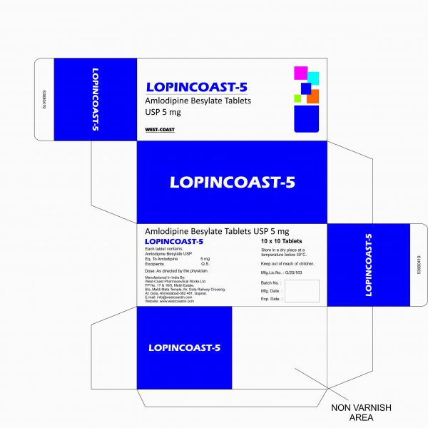 LOPINCOAST-5 BOX